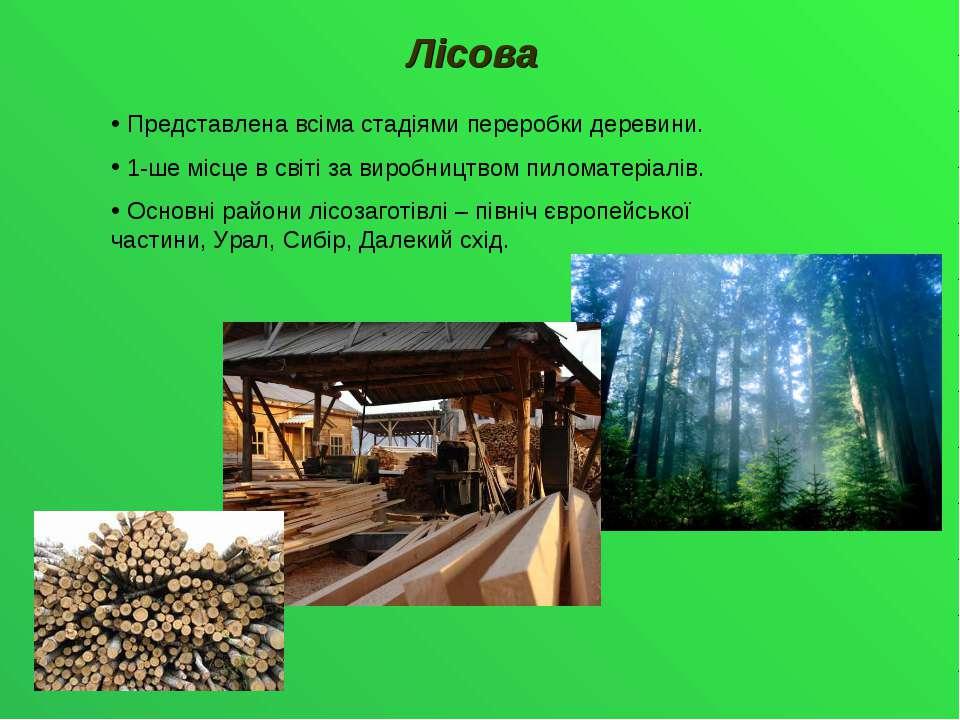 Лісова Представлена всіма стадіями переробки деревини. 1-ше місце в світі за ...