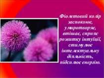 Фіолетовий колір заспокоює, умиротворяє, втішає, сприяє розвитку інтуїції, ст...