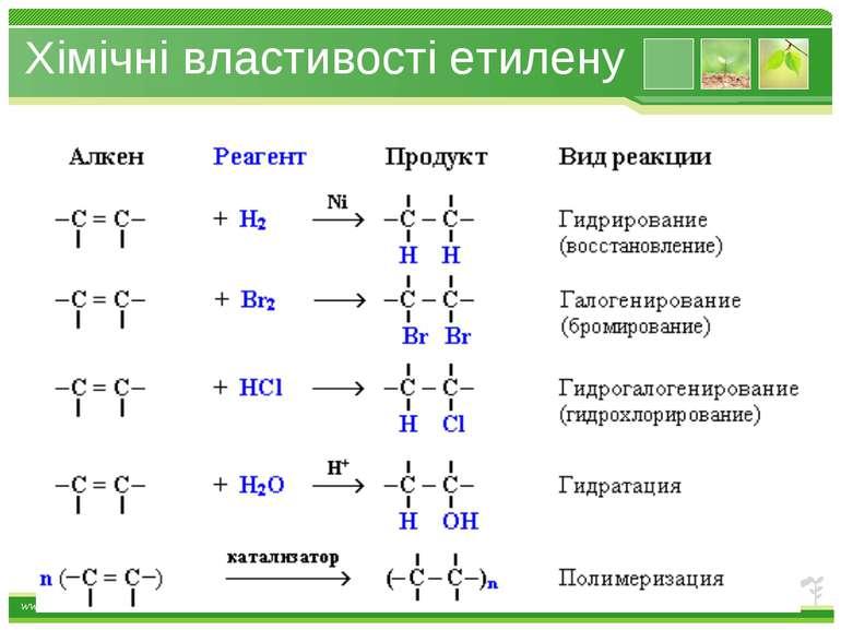 Хімічні властивості етилену www.themegallery.com