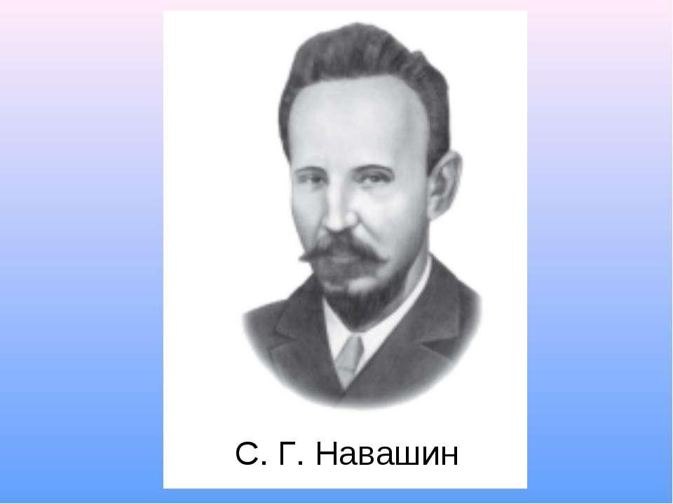 С. Г. Навашин