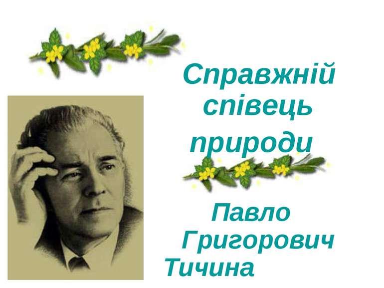 Справжній співець природи Павло Григорович Тичина