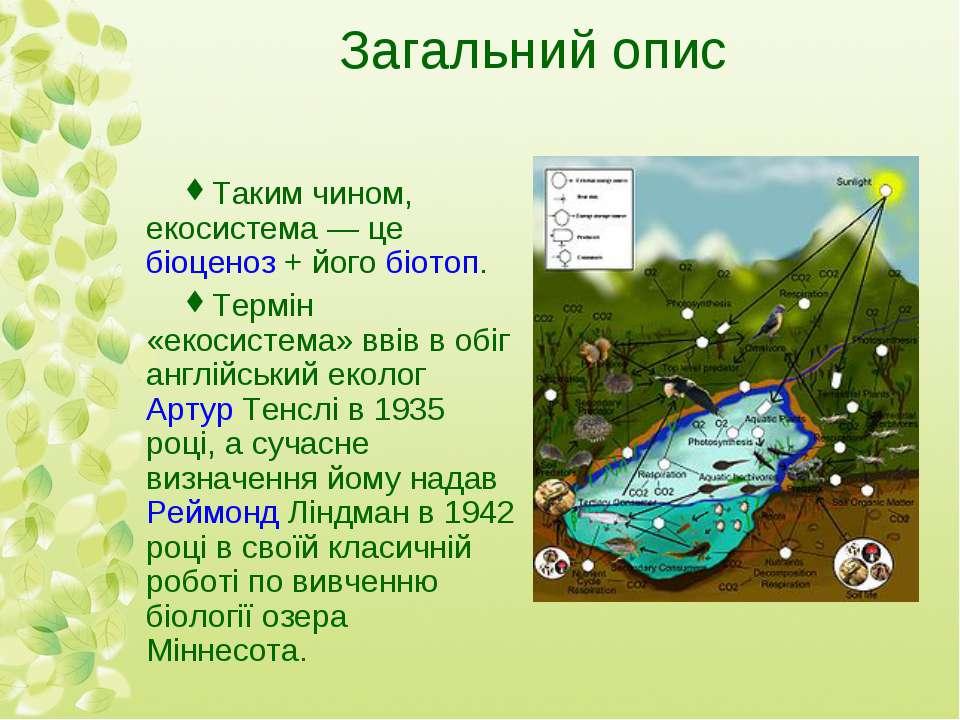Загальний опис Таким чином, екосистема— цебіоценоз+ йогобіотоп. Термін «е...