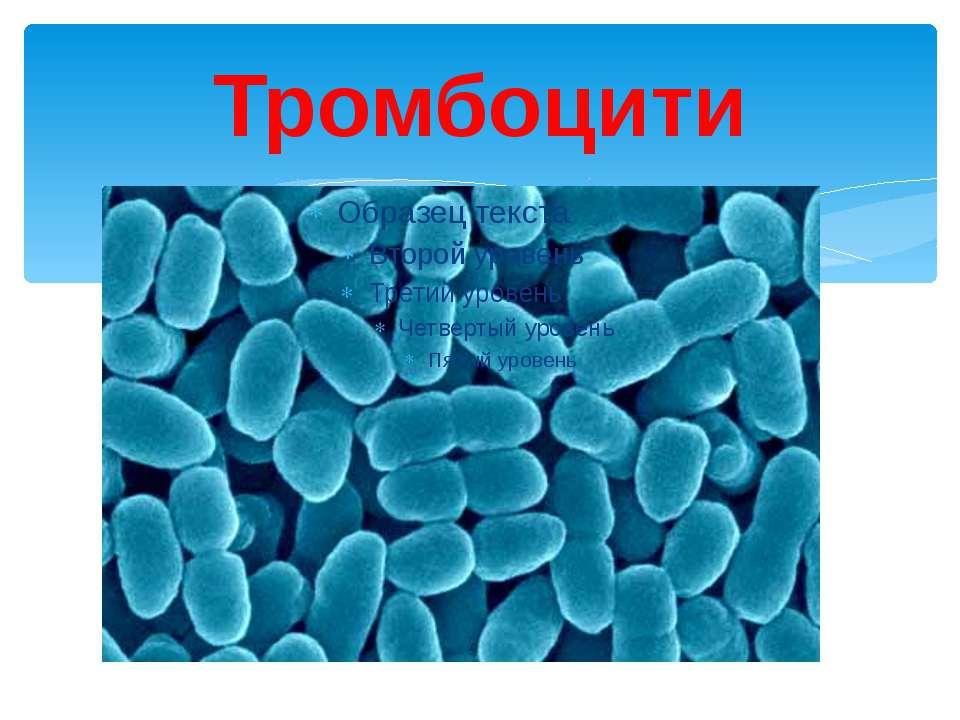 Тромбоцити