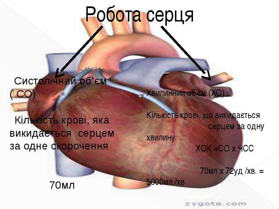 Робота серця Систолічний об'єм ( СО) Кількість крові, яка викидається серцем ...