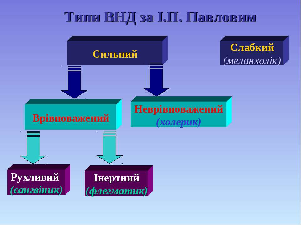 Типи ВНД за І.П. Павловим Сильний Слабкий (меланхолік) Врівноважений Неврівно...