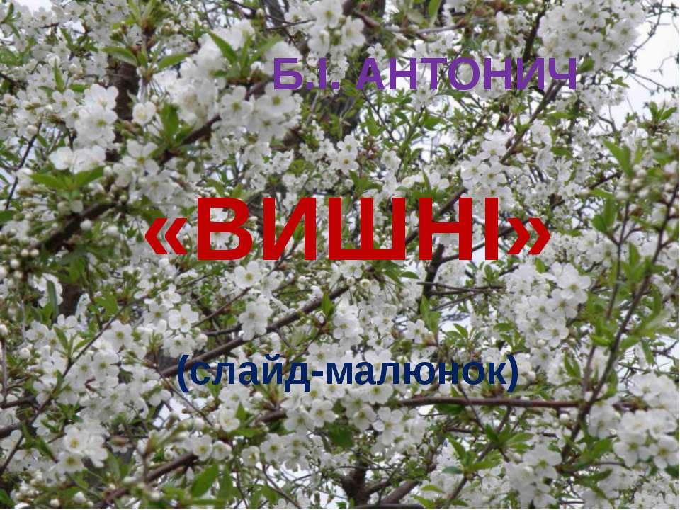 Б.І. АНТОНИЧ «ВИШНІ» (слайд-малюнок)