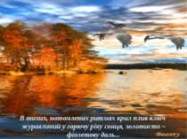 В тихих, натомлених ритмах крил плив ключ журавлиний у горючу ріку сонця, зол...