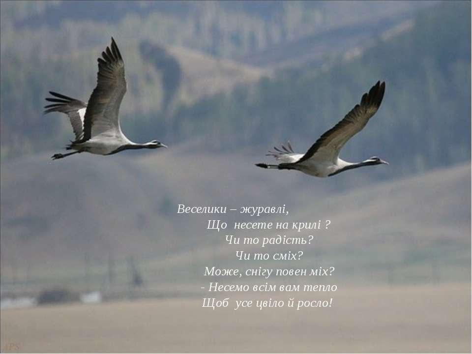 Веселики – журавлі, Що несете на крилі ? Чи то радість? Чи то сміх? Може, сні...
