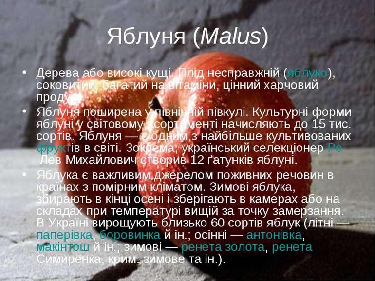 Яблуня (Malus) Дерева або високі кущі. Плід несправжній (яблуко), соковитий, ...