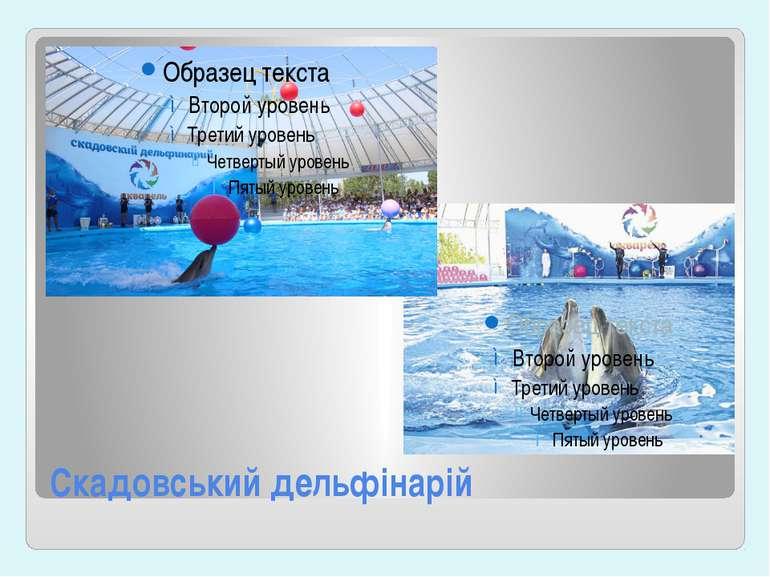Скадовський дельфінарій