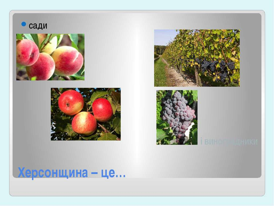 Херсонщина – це… сади і виноградники