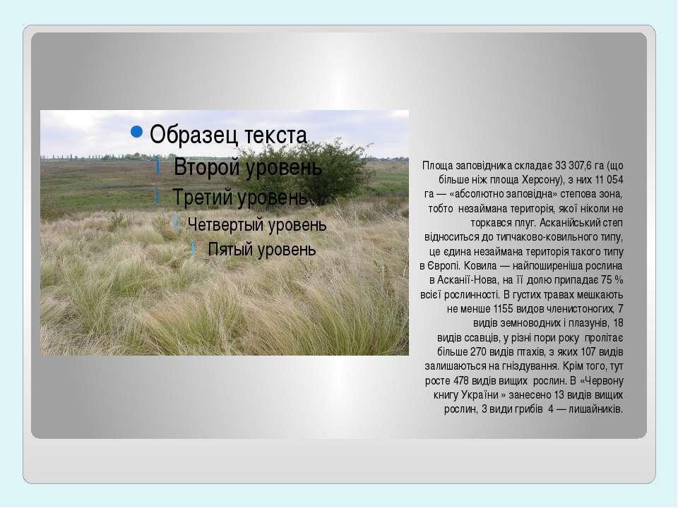 Площа заповідника складає 33307,6га (що більше ніж площа Херсону), з них 11...