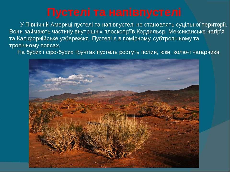 Пустелі та напівпустелі У Північній Америці пустелі та напівпустелі не стано...