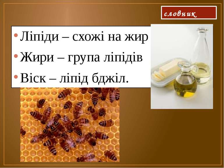 словник Ліпіди – схожі на жир Жири – група ліпідів Віск – ліпід бджіл.