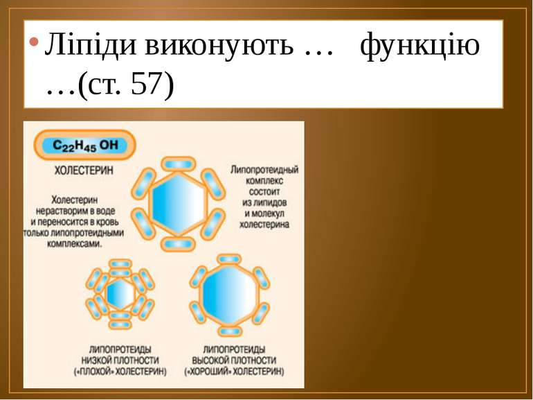 Ліпіди виконують … функцію …(ст. 57)