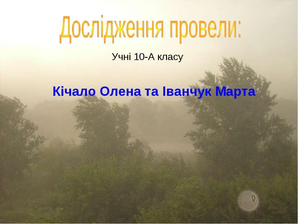 Учні 10-А класу Кічало Олена та Іванчук Марта