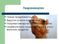 Тваринництво Низька продуктивність Відсутня сучасна кормова база Популярні ві...