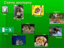 Схема зоопарку Каса 1 5 4 3 2 6 Вихід Слон Мавпочки Каруселі Ведмеді Лев Сова...