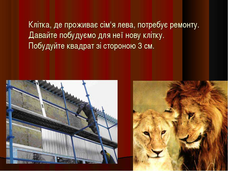 Клітка, де проживає сім'я лева, потребує ремонту. Давайте побудуємо для неї н...
