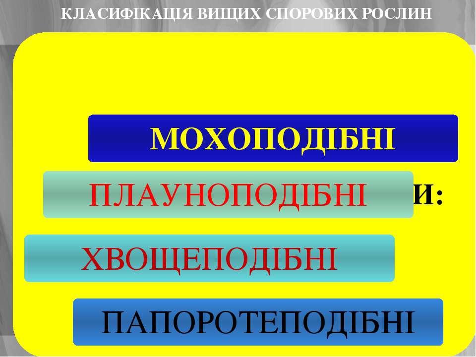 КЛАСИФІКАЦІЯ ВИЩИХ СПОРОВИХ РОСЛИН