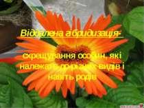 Віддалена гібридизація- схрещування особин, які належать до різних видів і на...