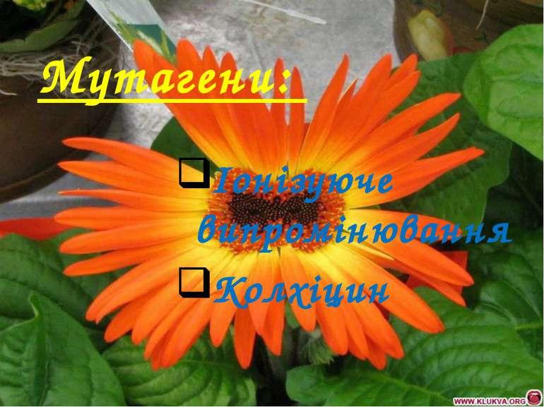 Мутагени: Iонізуюче випромінювання Колхіцин