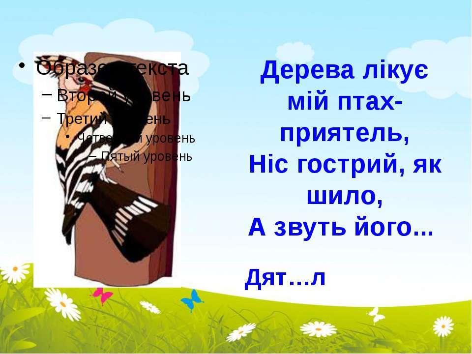 Дерева лікує мій птах-приятель, Ніс гострий, як шило, А звуть його... Дят…л