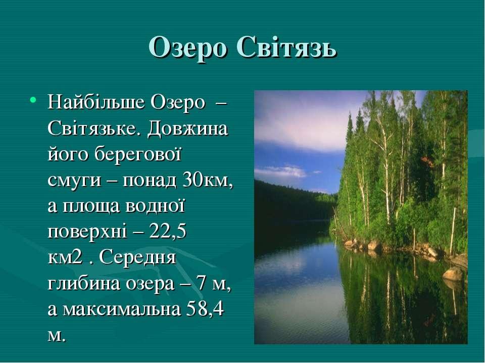 Озеро Світязь Найбільше Озеро – Світязьке. Довжина його берегової смуги – пон...