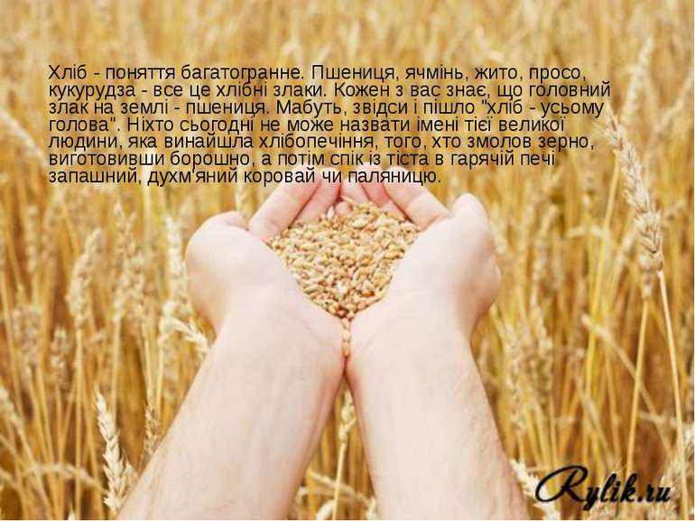 Хліб - поняття багатогранне. Пшениця, ячмінь, жито, просо, кукурудза - все це...