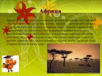 Африка – другий за розміром материк на Землі (від латинської «африкус» - без ...