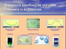 Технологія виробництва харчових барвників із водоростей