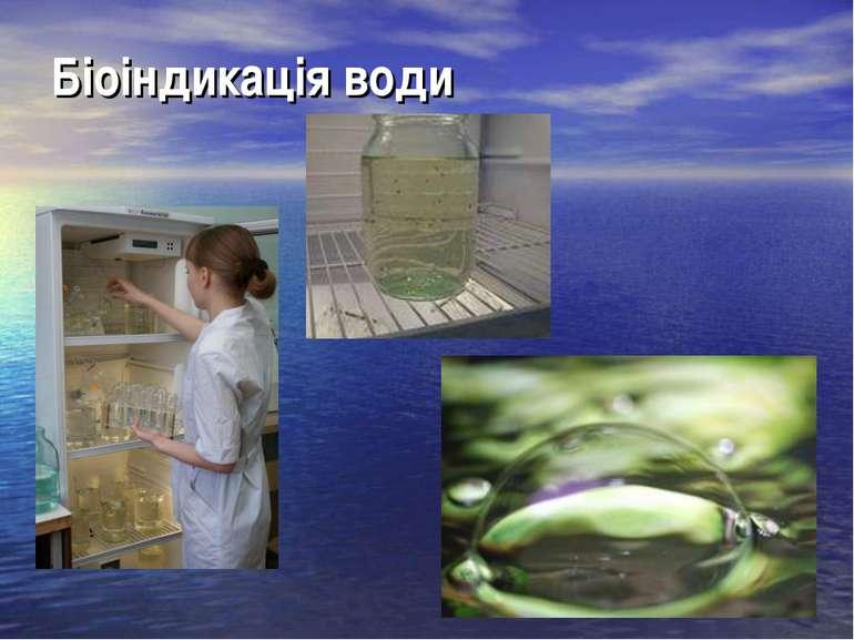 Біоіндикація води