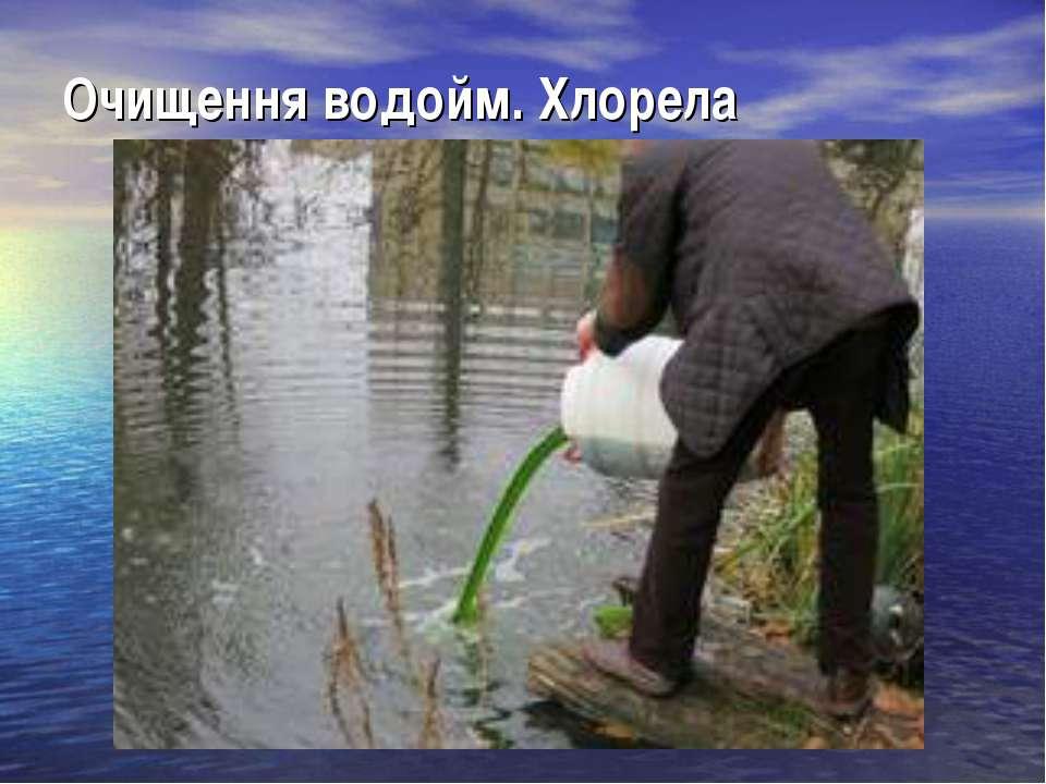 Очищення водойм. Хлорела