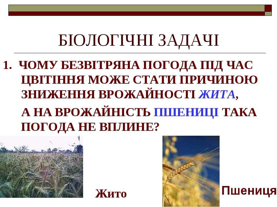 БІОЛОГІЧНІ ЗАДАЧІ 1. ЧОМУ БЕЗВІТРЯНА ПОГОДА ПІД ЧАС ЦВІТІННЯ МОЖЕ СТАТИ ПРИЧИ...