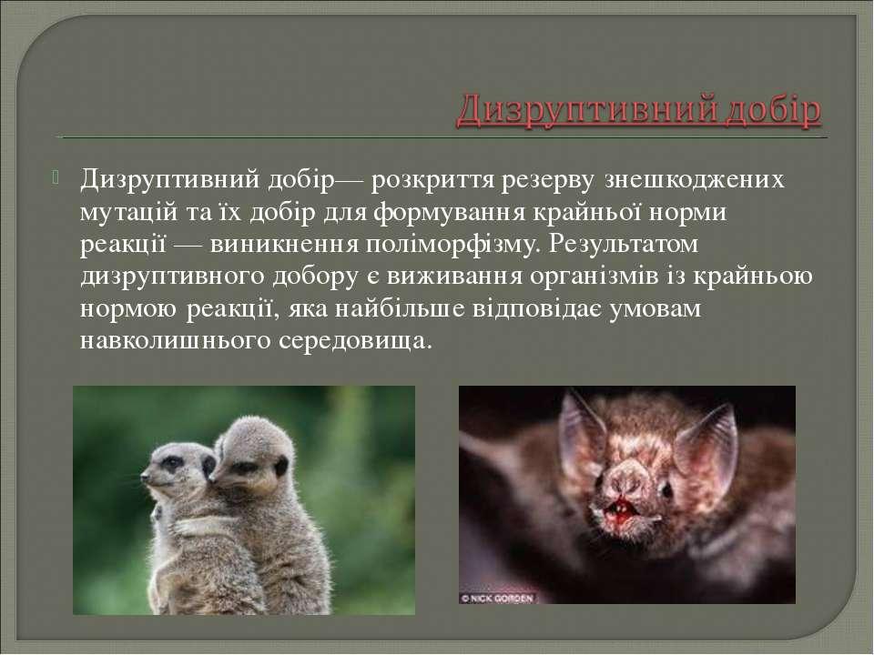 Дизруптивний добір— розкриття резерву знешкоджених мутацій та їх добір для фо...