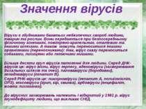 Значення вірусів Віруси є збудниками багатьох небезпечних хвороб людини, твар...