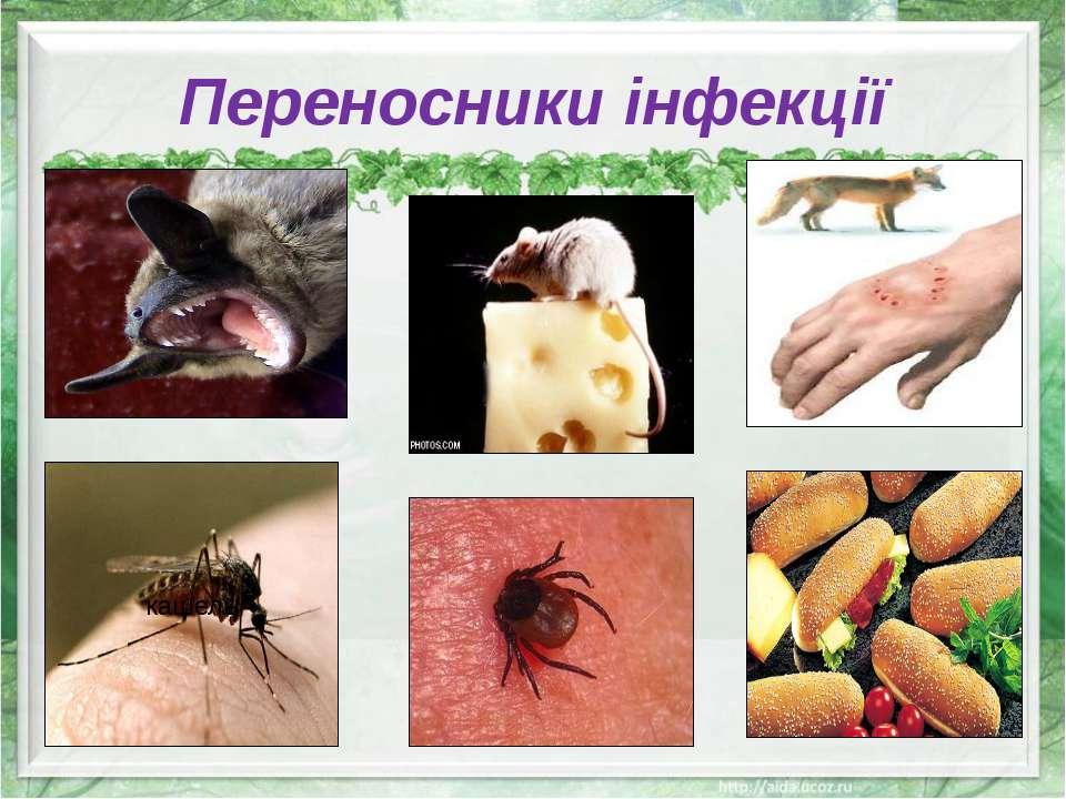 Переносники інфекції кашель