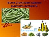 Білки стручкової квасолі руйнують вітамін Е.