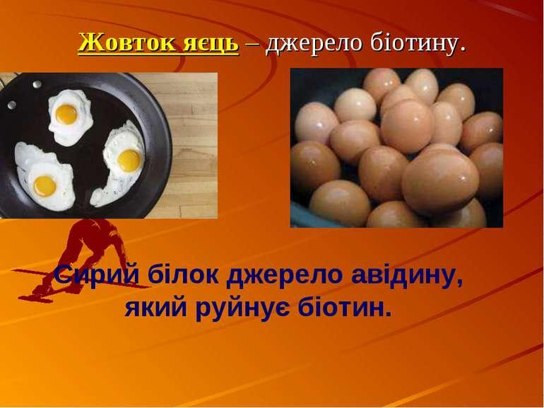 Сирий білок джерело авідину, який руйнує біотин. Жовток яєць – джерело біотину.
