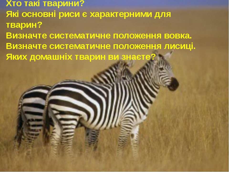 Хто такі тварини? Які основні риси є характерними для тварин? Визначте систем...