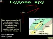 Яр, лісостепова зона України 3 вершина гирло схили дно схили дно брівка брівк...