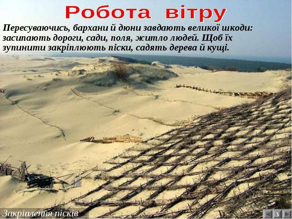 Закріплення пісків Пересуваючись, бархани й дюни завдають великої шкоди: заси...