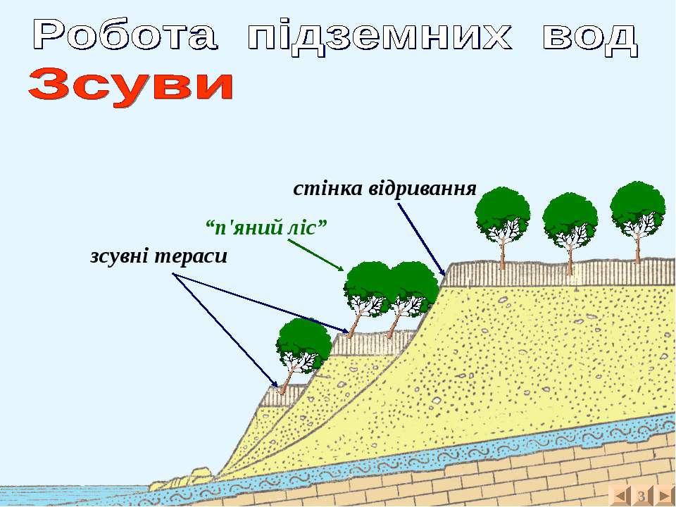 """3 зсувні тераси стінка відривання """"п'яний ліс"""""""