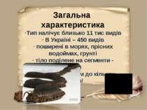 Загальна характеристика Тип налічує близько 11 тис видів В Україні – 450 виді...