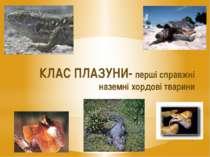 КЛАС ПЛАЗУНИ- перші справжні наземні хордові тварини