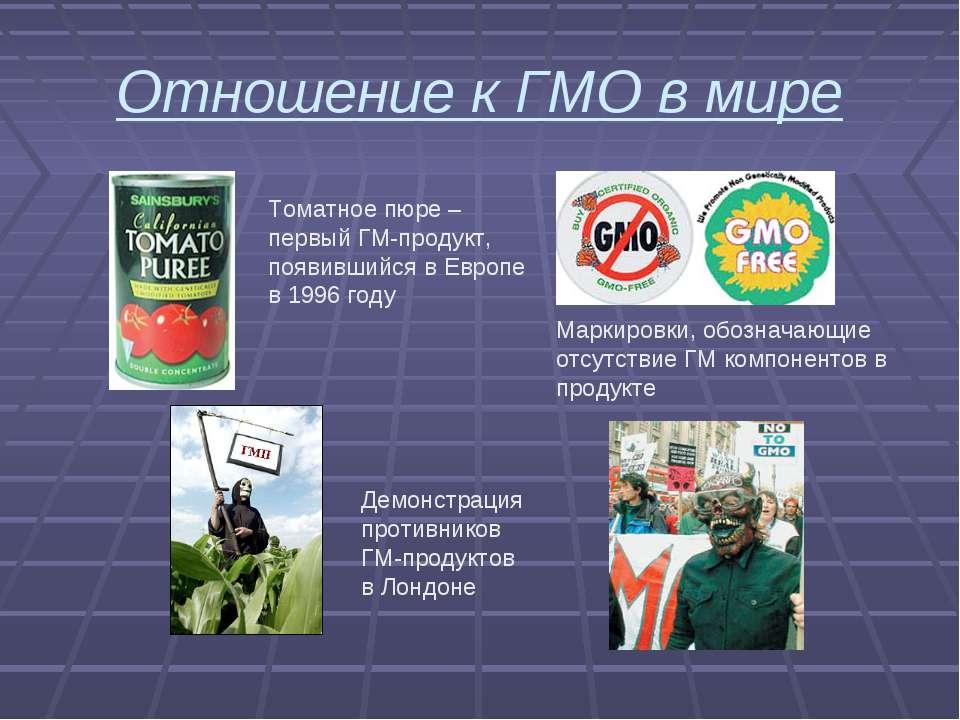 Отношение к ГМО в мире Томатное пюре – первый ГМ-продукт, появившийся в Европ...
