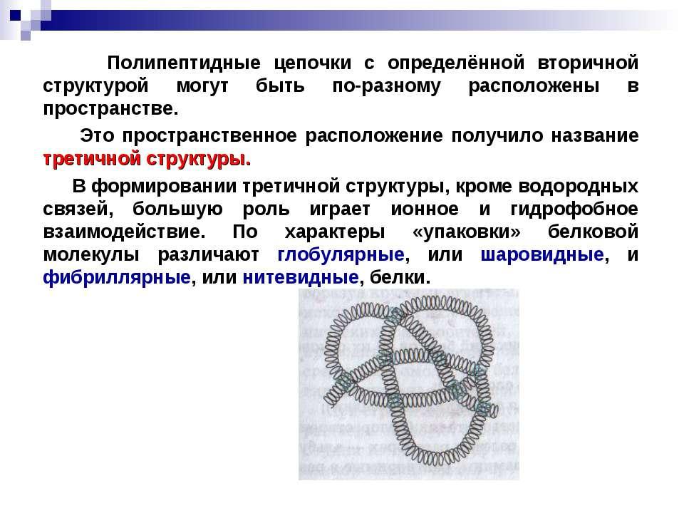 Полипептидные цепочки с определённой вторичной структурой могут быть по-разно...