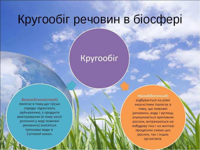 Кругообіг речовин в біосфері