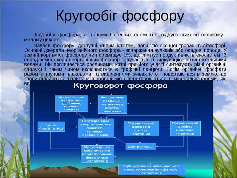 Кругообіг фосфору Кругообіг фосфора, як і інших біогенних елементів, відбува...