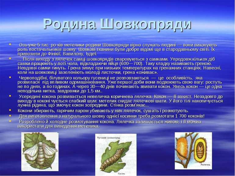 Родина Шовкопряди Ось уже 5 тис. ро ків метелики родини Шовкопряди вірно служ...